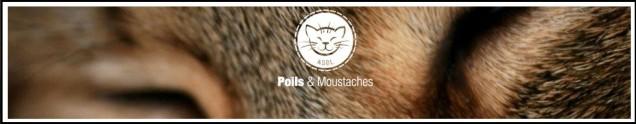 banniere poils et moustaches